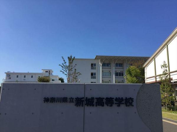 新城高等学校サムネイル